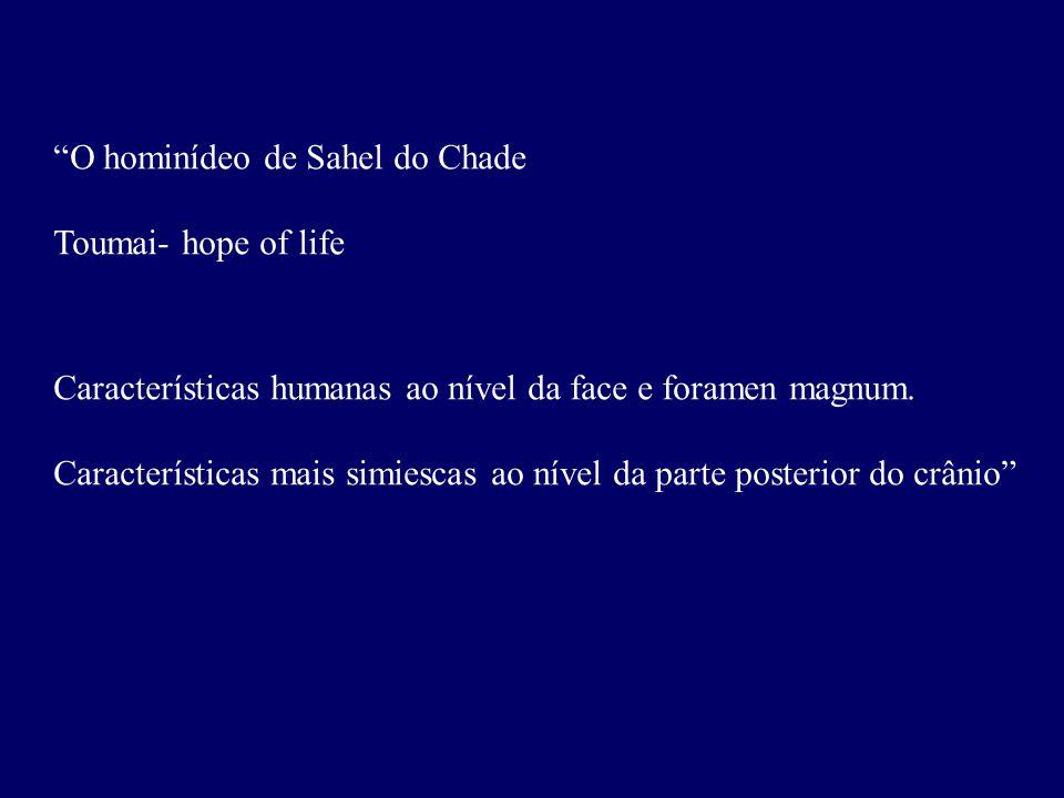 O hominídeo de Sahel do Chade Toumai- hope of life Características humanas ao nível da face e foramen magnum.