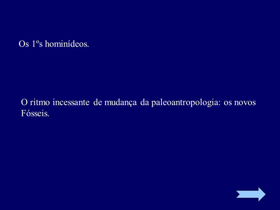 Os 1ºs hominídeos. O ritmo incessante de mudança da paleoantropologia: os novos Fósseis.