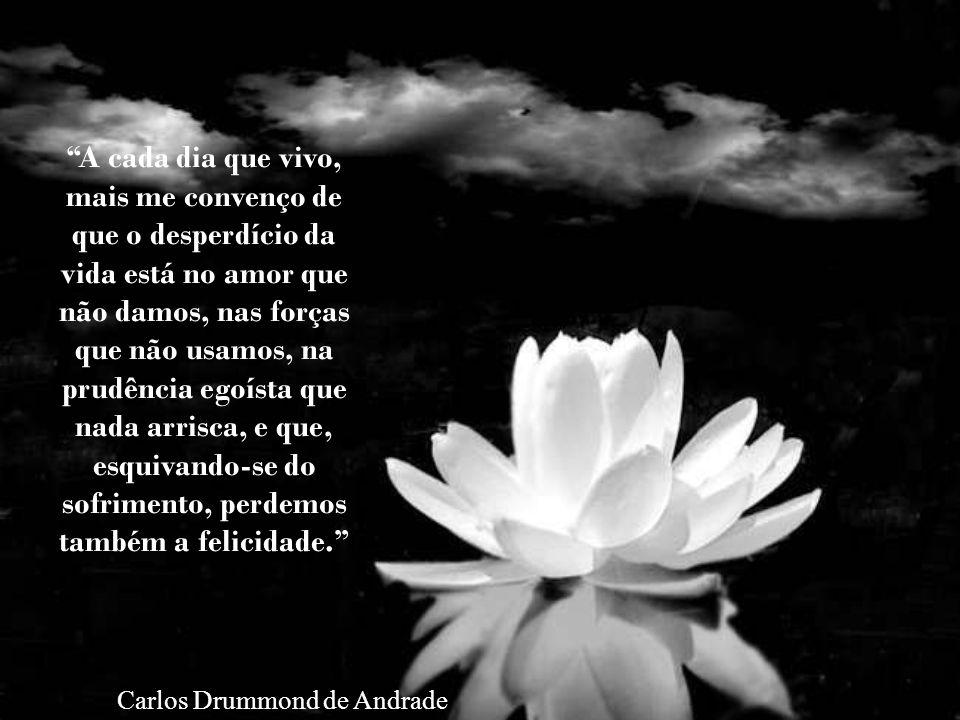 A cada dia que vivo, mais me convenço de que o desperdício da vida está no amor que não damos, nas forças que não usamos, na prudência egoísta que nada arrisca, e que, esquivando-se do sofrimento, perdemos também a felicidade.