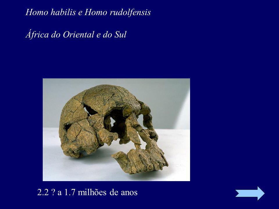 Homo habilis e Homo rudolfensis África do Oriental e do Sul 2.2 ? a 1.7 milhões de anos