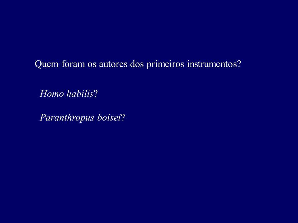 Quem foram os autores dos primeiros instrumentos? Homo habilis? Paranthropus boisei?