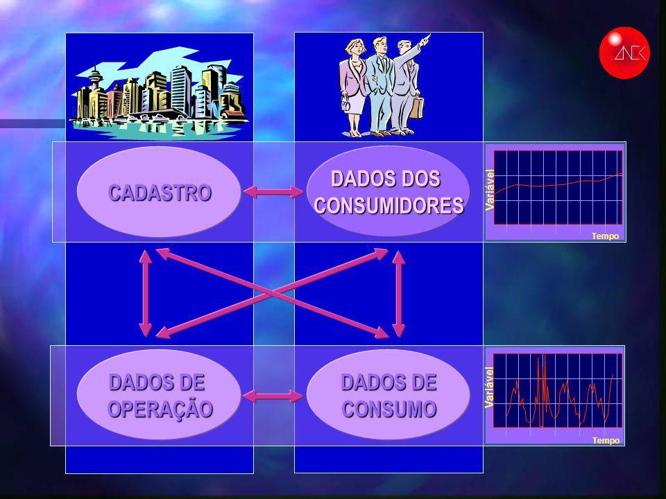 Variável Tempo Variável CADASTRO DADOS DOS CONSUMIDORES DADOS DE OPERAÇÃO CONSUMO