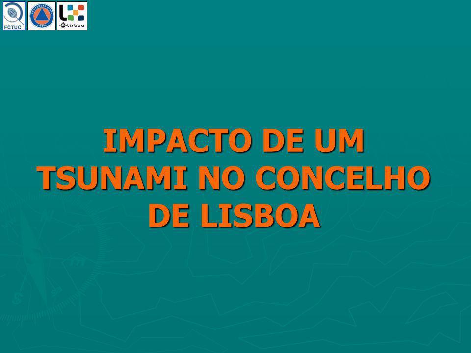Modelo Hidrológico André Sá 13.Fev.2006 Impacto de um Tsunami no Concelho de Lisboa