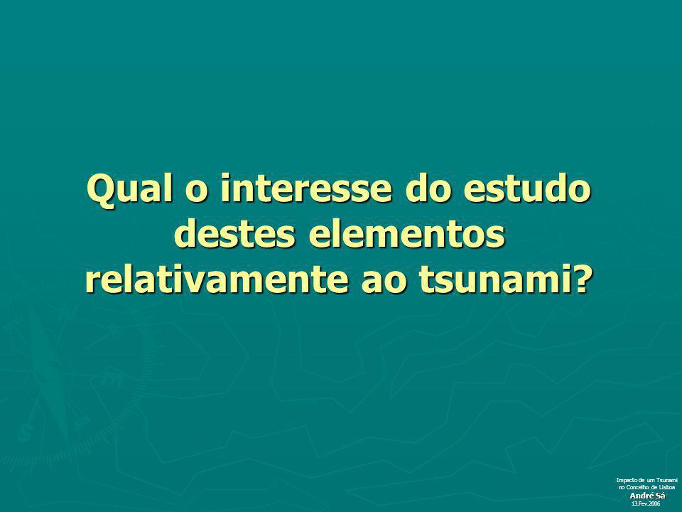 Qual o interesse do estudo destes elementos relativamente ao tsunami? André Sá 13.Fev.2006 Impacto de um Tsunami no Concelho de Lisboa