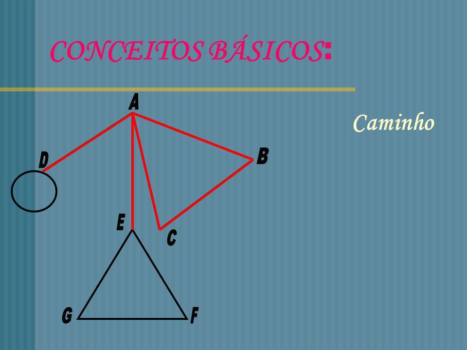 CONCEITOS BÁSICOS: Subgrafo Vértices adjacentes Arestas adjacentes Laço Pseudografo Grau de um vértice Ponto isolado Arestas múltiplas Multigrafo Graf