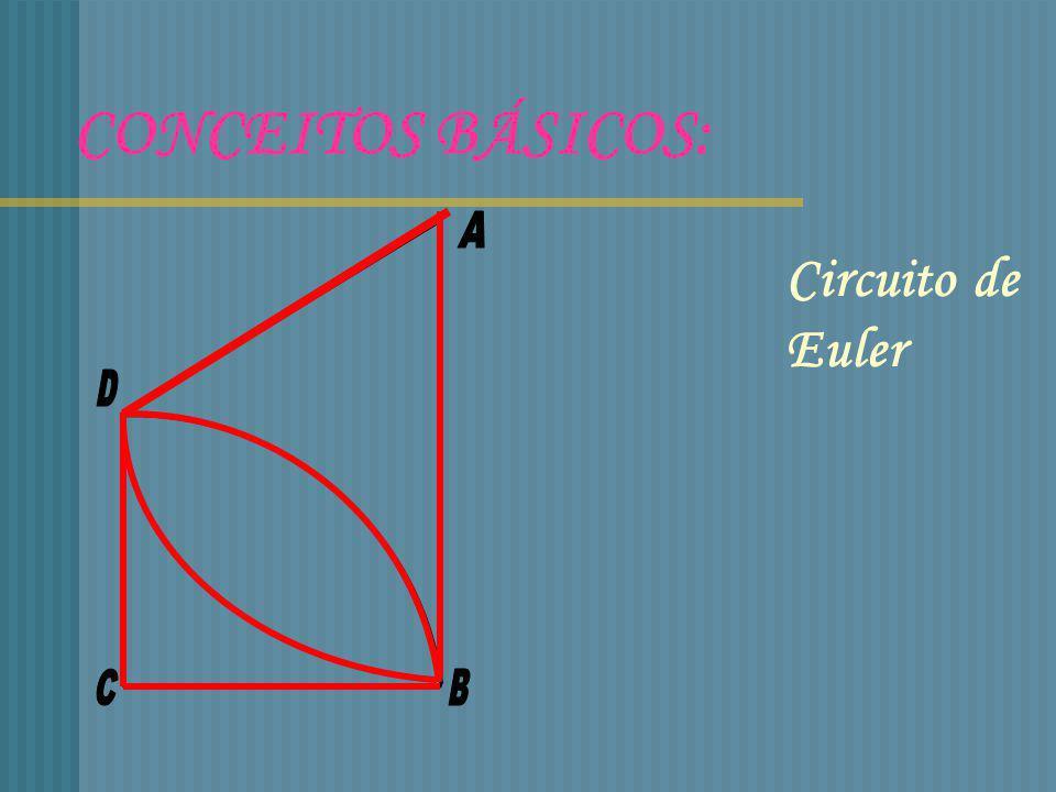 CONCEITOS BÁSICOS: Circuito de Euler