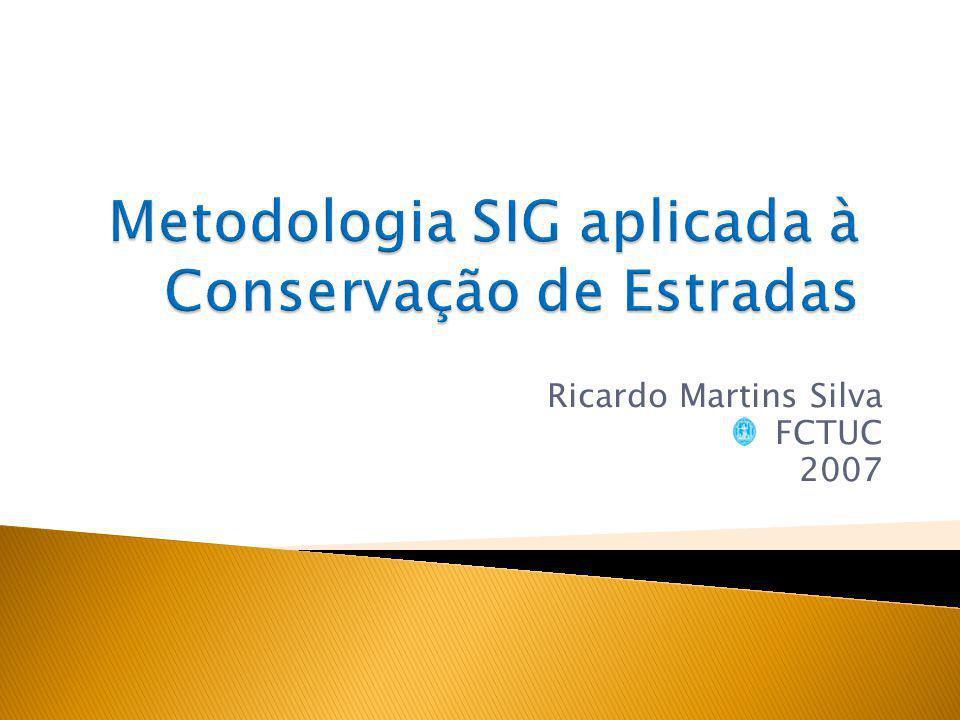 Ricardo Martins Silva FCTUC 2007