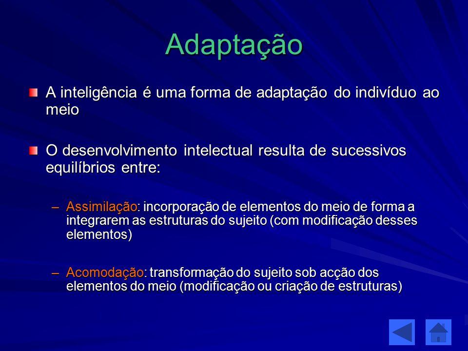 Adaptação A inteligência é uma forma de adaptação do indivíduo ao meio O desenvolvimento intelectual resulta de sucessivos equilíbrios entre: –Assimil