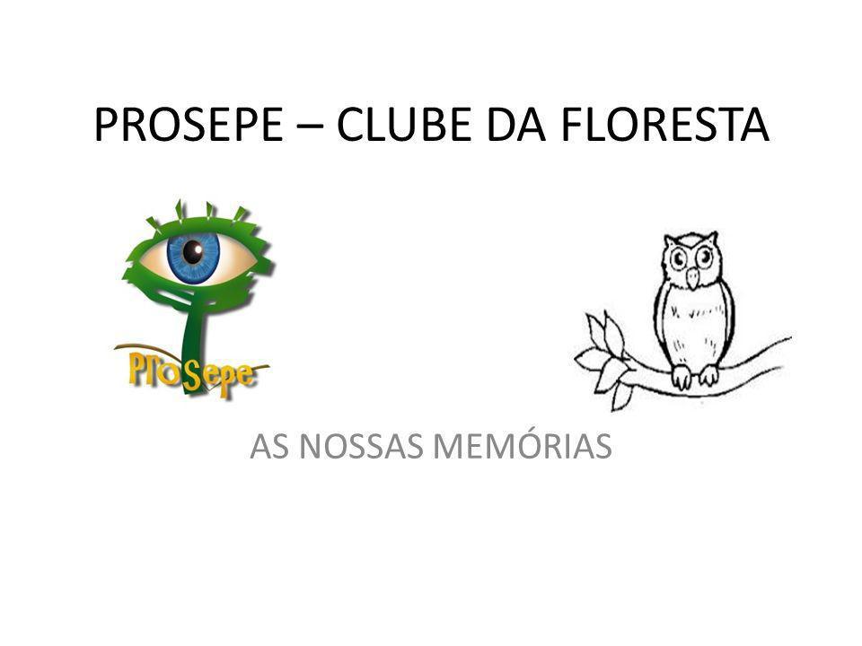 PROSEPE – CLUBE DA FLORESTA AS NOSSAS MEMÓRIAS