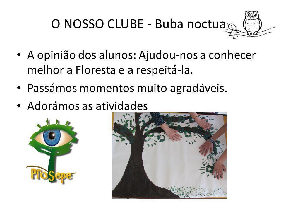 O NOSSO CLUBE - Buba noctua A opinião dos alunos: Ajudou-nos a conhecer melhor a Floresta e a respeitá-la.