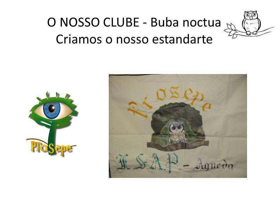 O NOSSO CLUBE - Buba noctua Fizemos arte
