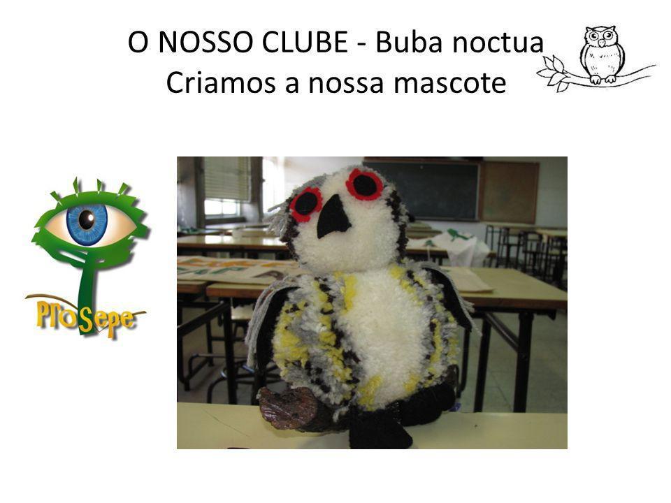 O NOSSO CLUBE - Buba noctua Criamos a nossa mascote