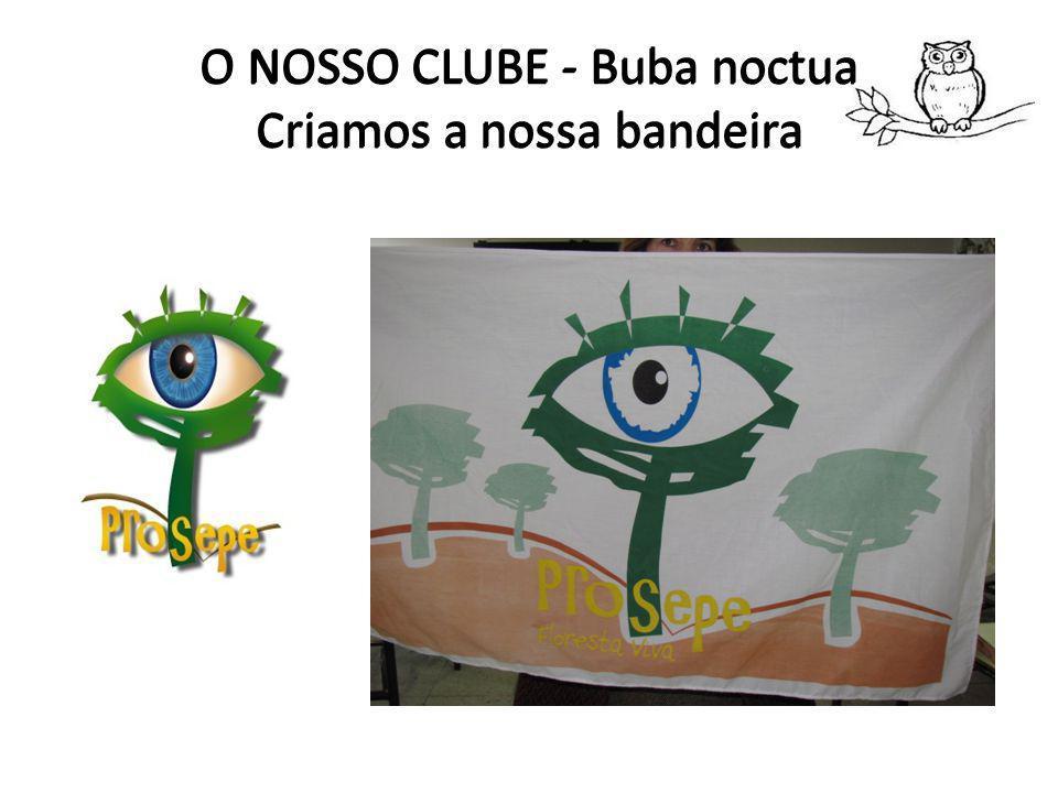 O NOSSO CLUBE - Buba noctua A opinião dos Funcionários O nosso pavilhão ficou mais bonito
