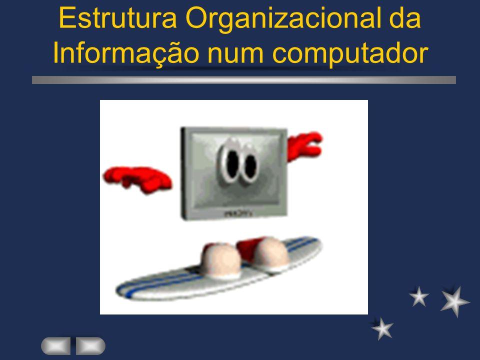 Introdução aos Sistemas Operativos Organização da informação num sistema informático.