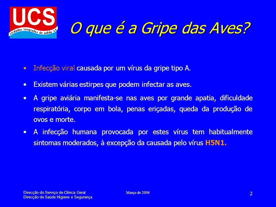 Direcção do Serviço de Clínica Geral Direcção de Saúde Higiene e Segurança Março de 2006 2 O que é a Gripe das Aves.