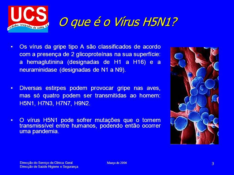 Direcção do Serviço de Clínica Geral Direcção de Saúde Higiene e Segurança Março de 2006 4 Como se transmite a Gripe das Aves .