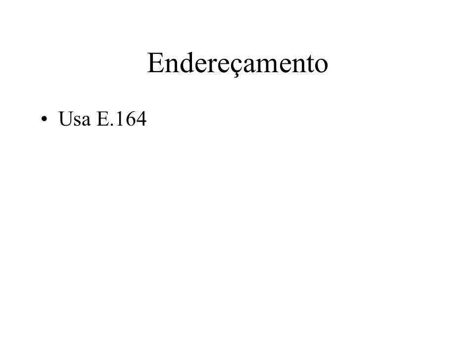 Endereçamento Usa E.164