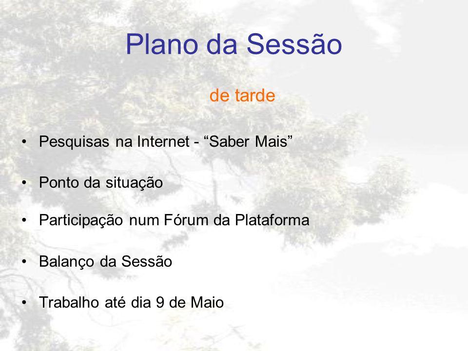 Plano da Sessão de tarde Pesquisas na Internet - Saber Mais Ponto da situação Participação num Fórum da Plataforma Balanço da Sessão Trabalho até dia