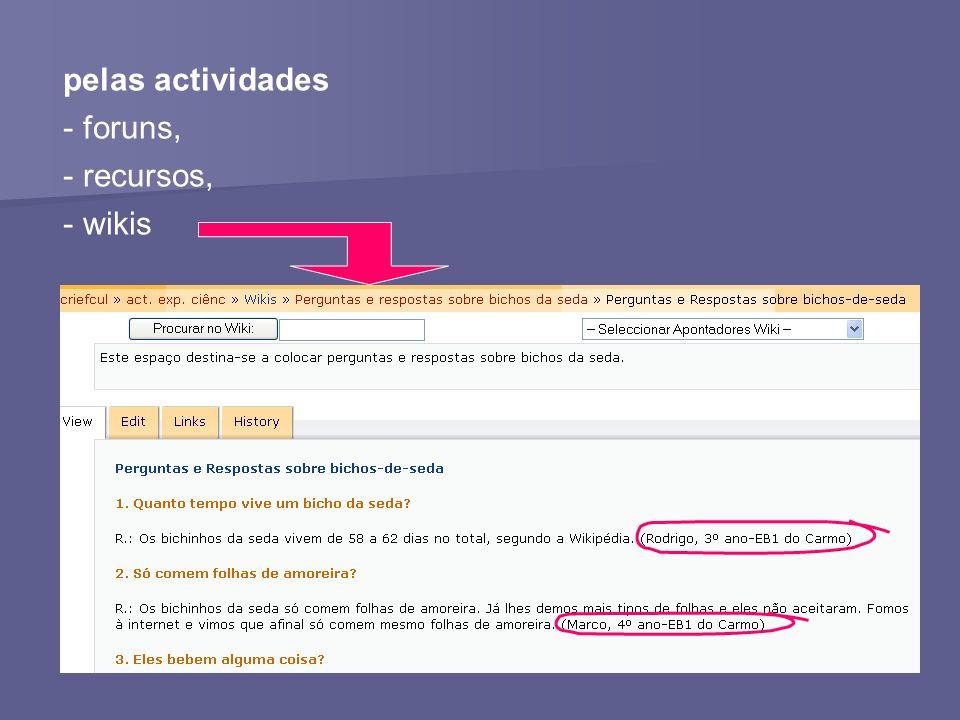 pelas actividades - foruns, - recursos, - wikis