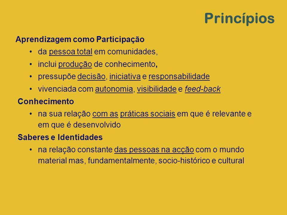 Aprendizagem como Participação da pessoa total em comunidades, inclui produção de conhecimento, pressupõe decisão, iniciativa e responsabilidade viven