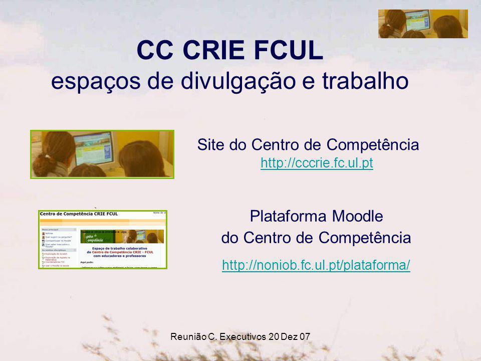 Reunião C. Executivos 20 Dez 07 CC CRIE FCUL espaços de divulgação e trabalho Site do Centro de Competência http://cccrie.fc.ul.pt http://cccrie.fc.ul