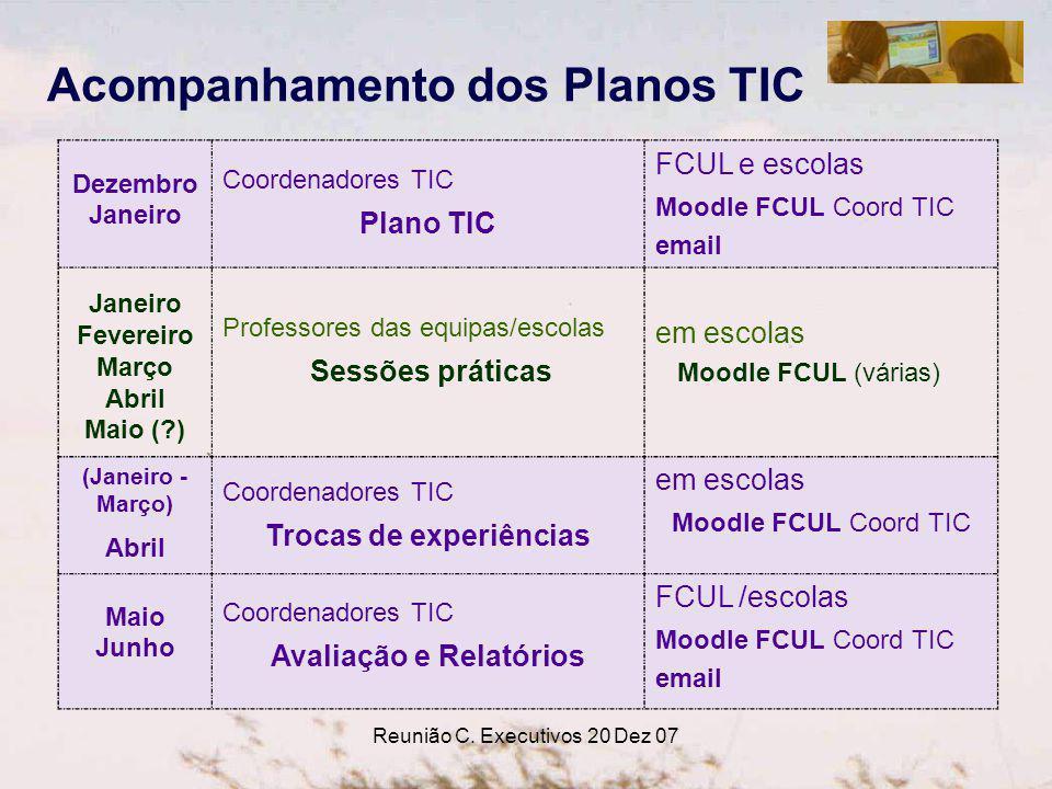Reunião C. Executivos 20 Dez 07 Dezembro Janeiro Coordenadores TIC Plano TIC FCUL e escolas Moodle FCUL Coord TIC email Janeiro Fevereiro Março Abril