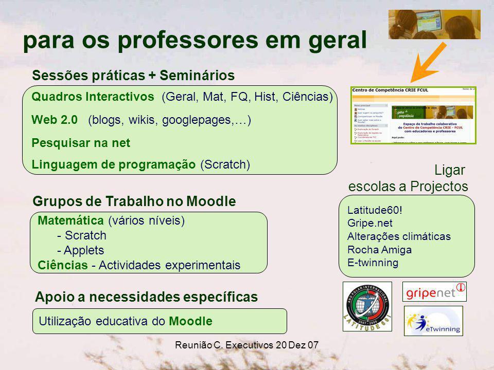 Reunião C. Executivos 20 Dez 07 Grupos de Trabalho no Moodle Matemática (vários níveis) - Scratch - Applets Ciências - Actividades experimentais Ligar