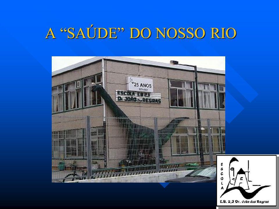 A SAÚDE DO NOSSO RIO