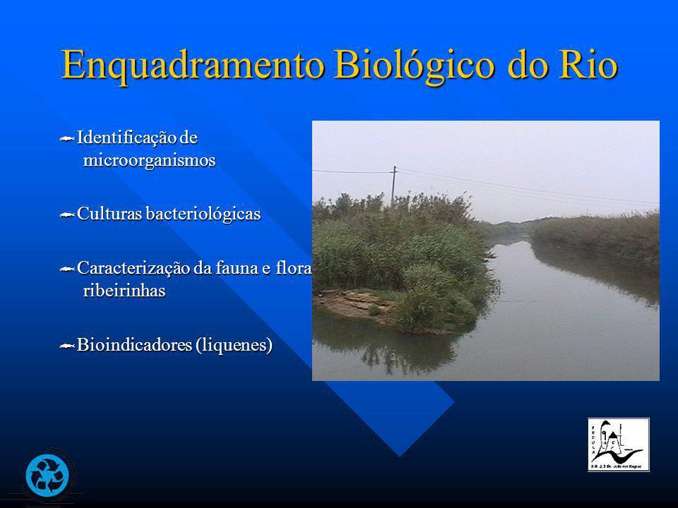 Enquadramento Biológico do Rio Identificação de microorganismos Identificação de microorganismos Culturas bacteriológicas Culturas bacteriológicas Caracterização da fauna e flora ribeirinhas Caracterização da fauna e flora ribeirinhas Bioindicadores (liquenes) Bioindicadores (liquenes)