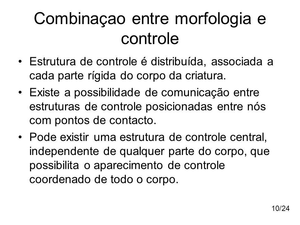 Combinaçao entre morfologia e controle Estrutura de controle é distribuída, associada a cada parte rígida do corpo da criatura. Existe a possibilidade