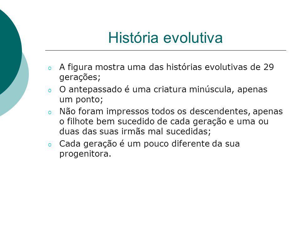História evolutiva o A figura mostra uma das histórias evolutivas de 29 gerações; o O antepassado é uma criatura minúscula, apenas um ponto; o Não for