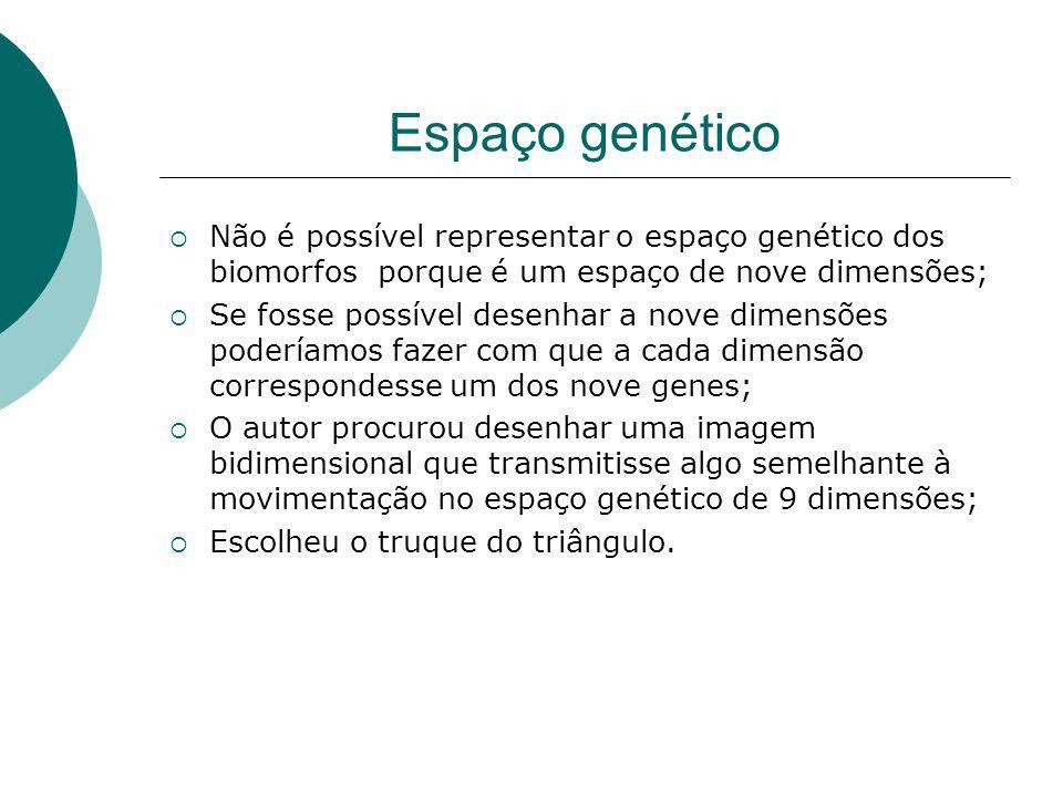 Espaço genético Não é possível representar o espaço genético dos biomorfos porque é um espaço de nove dimensões; Se fosse possível desenhar a nove dim