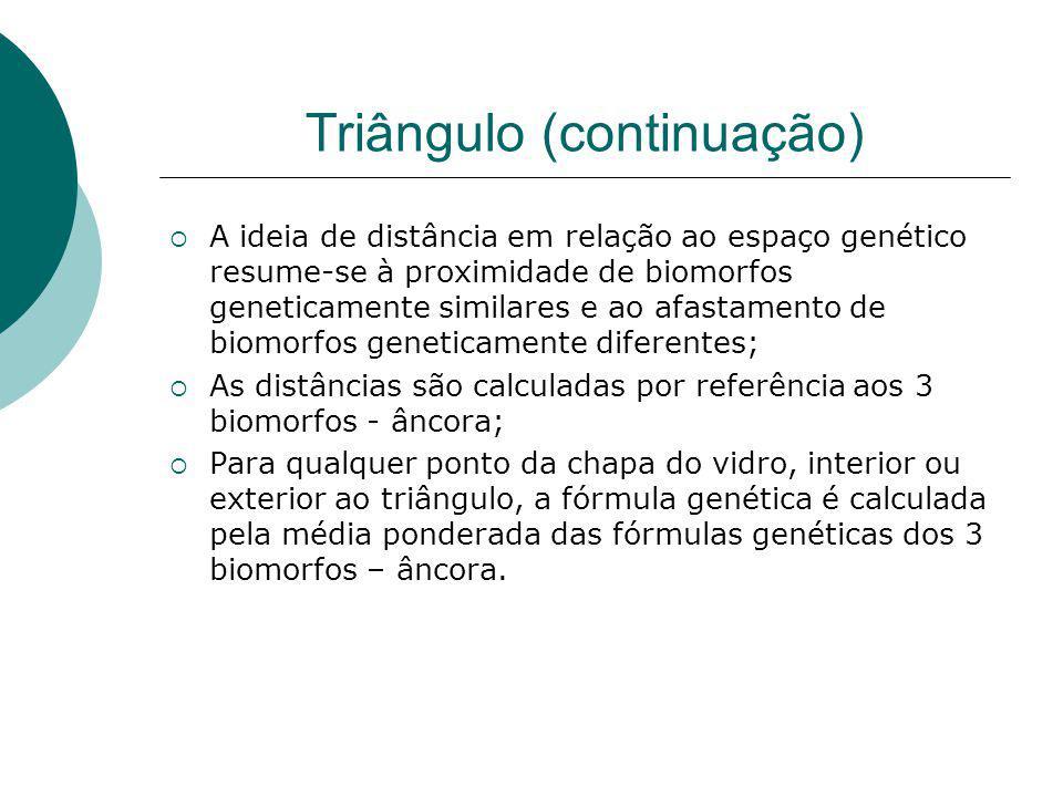 Triângulo (continuação) A ideia de distância em relação ao espaço genético resume-se à proximidade de biomorfos geneticamente similares e ao afastamen