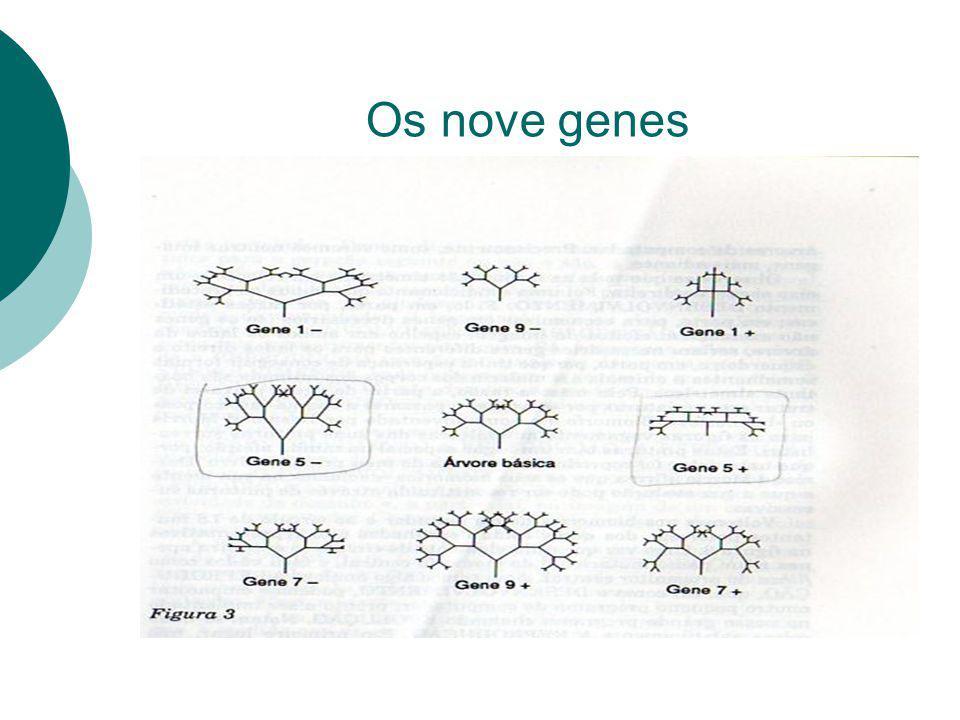 Os nove genes