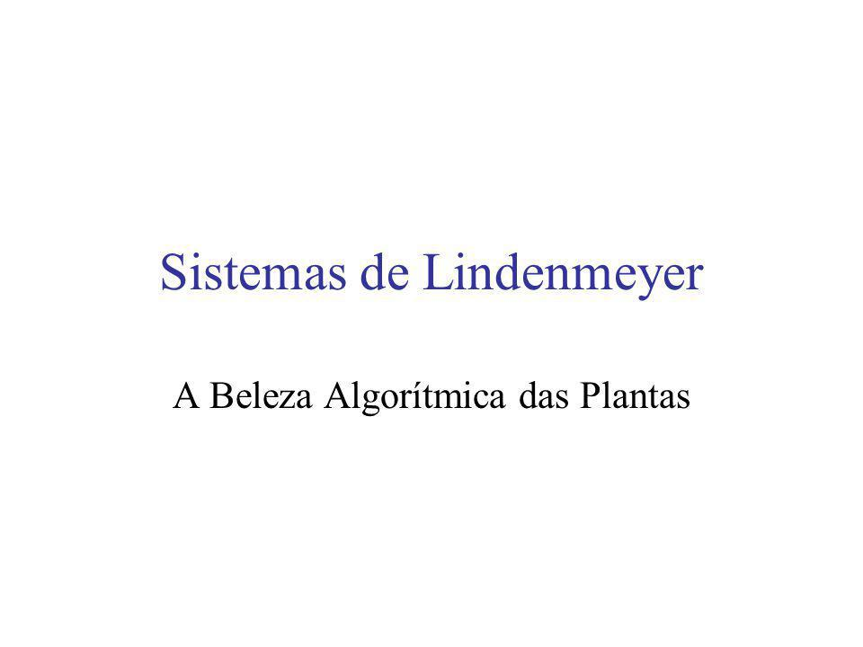 Sistemas-L: (Segundo a Wikipedia) Um sistema-L ou sistema de Lindenmayer é uma gramática formal (um conjunto de regras e de símbolos) utilizada de modo mais notório para modelizar os processos de crescimento do desenvolvimento das plantas, embora seja capazes de modelizar a morfologia de uma variedade de organismos.