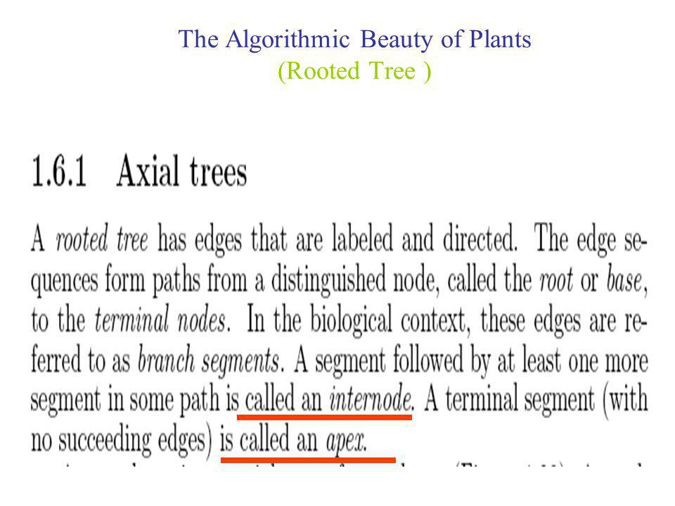 The Algorithmic Beauty of Plants (Rooted Tree )