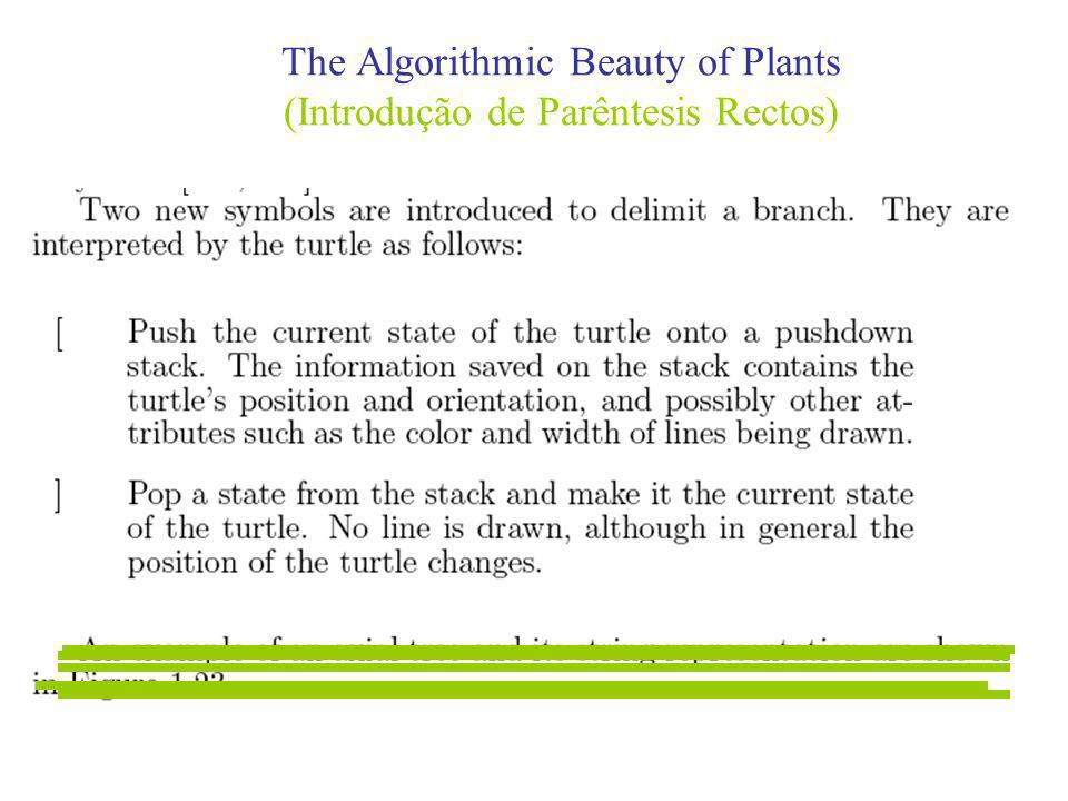 The Algorithmic Beauty of Plants (Introdução de Parêntesis Rectos)