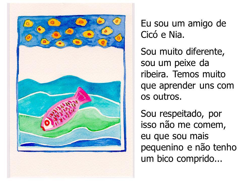 Eu sou um amigo de Cicó e Nia. Sou muito diferente, sou um peixe da ribeira. Temos muito que aprender uns com os outros. Sou respeitado, por isso não