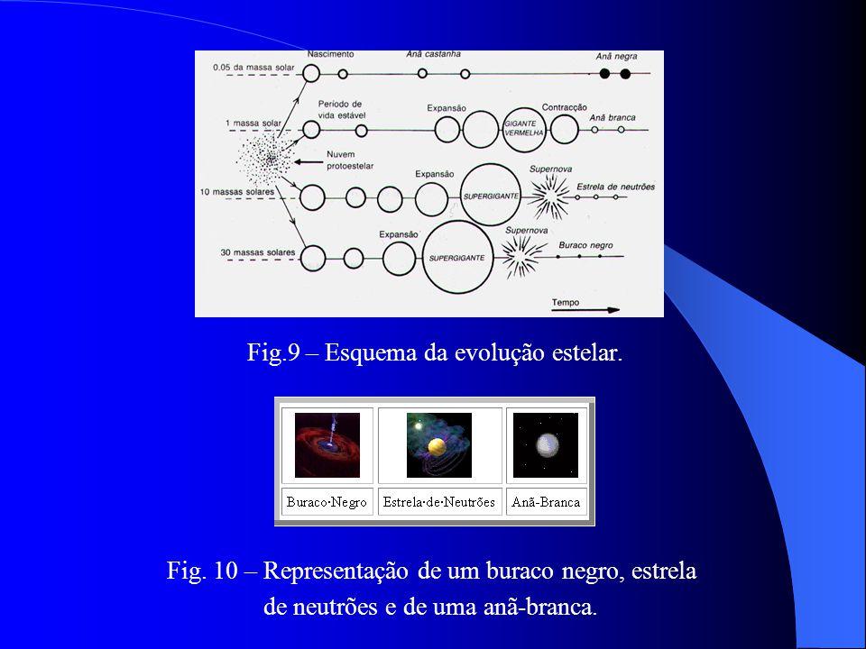Fig.8 – Anatomia de uma estrela de neutrões.