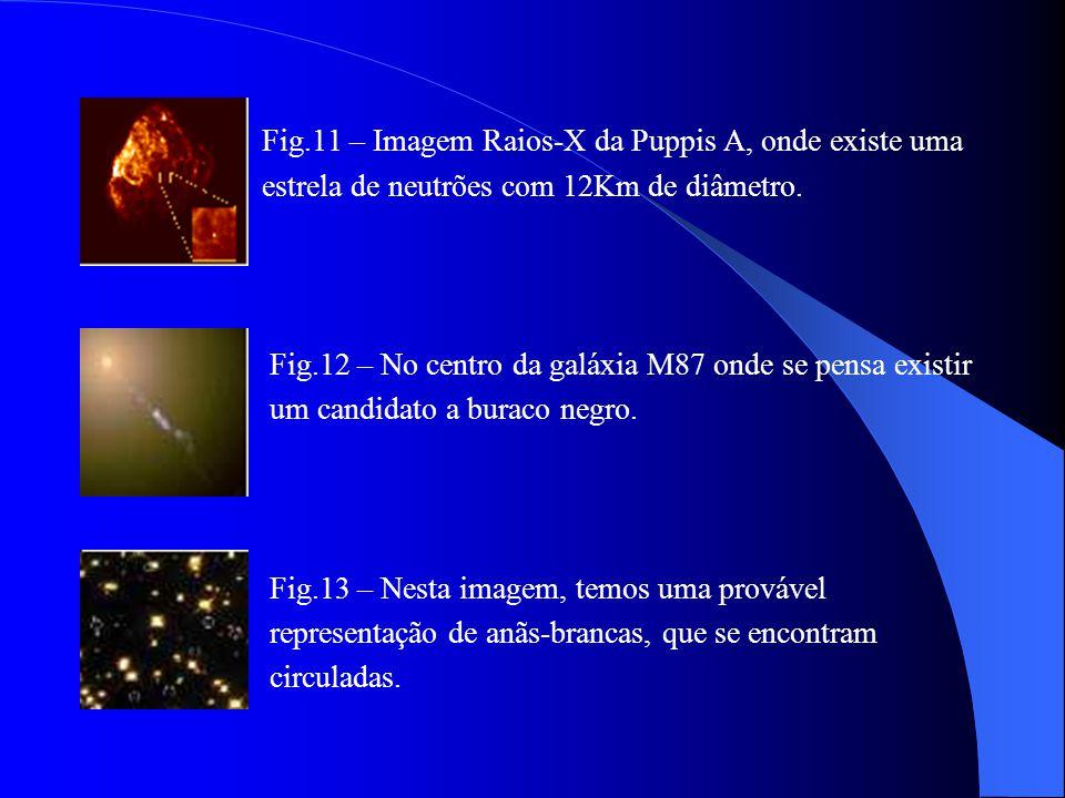 Fig.9 – Esquema da evolução estelar. Fig. 10 – Representação de um buraco negro, estrela de neutrões e de uma anã-branca.