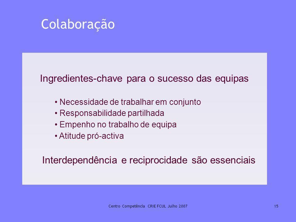Centro Competência CRIE FCUL Julho 200715 Ingredientes-chave para o sucesso das equipas Necessidade de trabalhar em conjunto Responsabilidade partilha