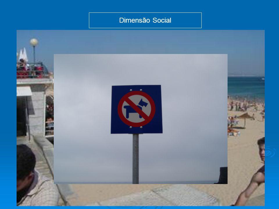 Dimensão Social Representações Práticas -Paz, tranquilidade, harmonia / espaço de divertimento; -Contradições nas práticas; - A praia é um bem público.