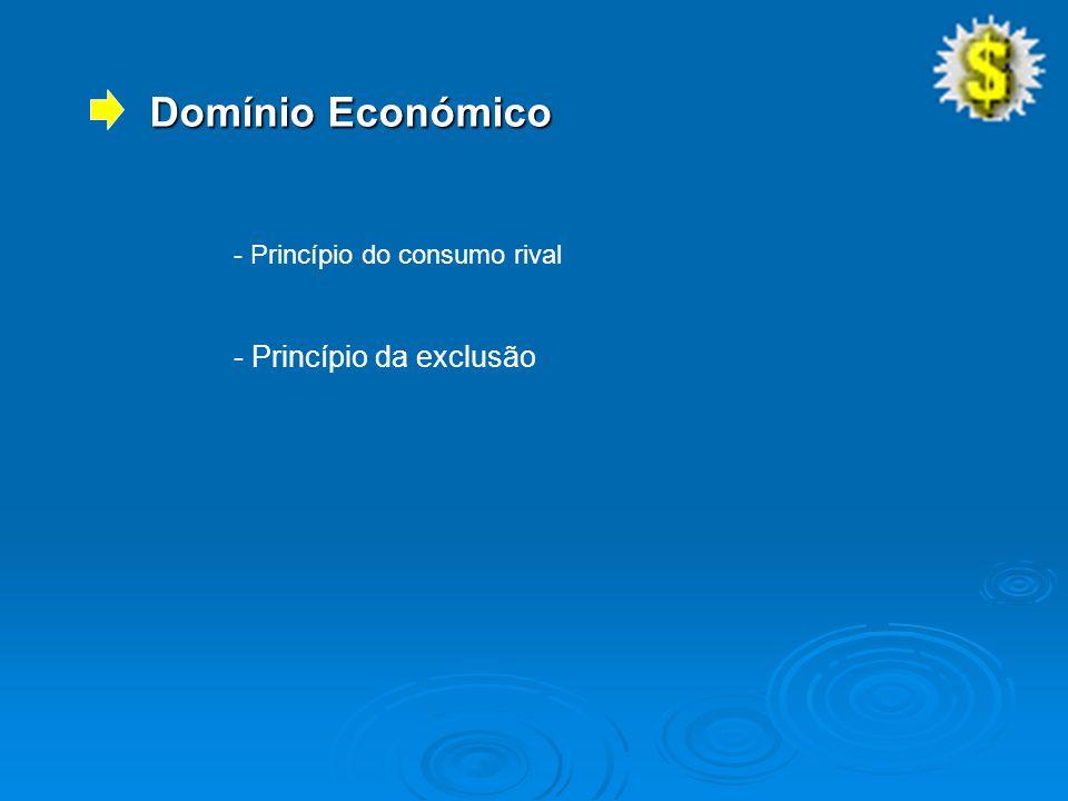 Domínio Económico - Princípio do consumo rival - Princípio da exclusão