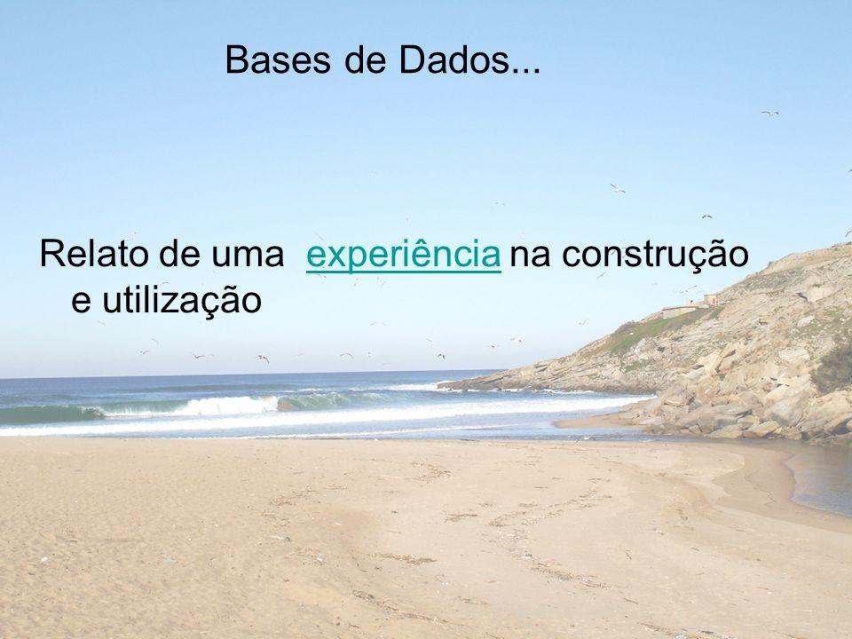 Bases de Dados... Relato de uma experiência na construção e utilizaçãoexperiência