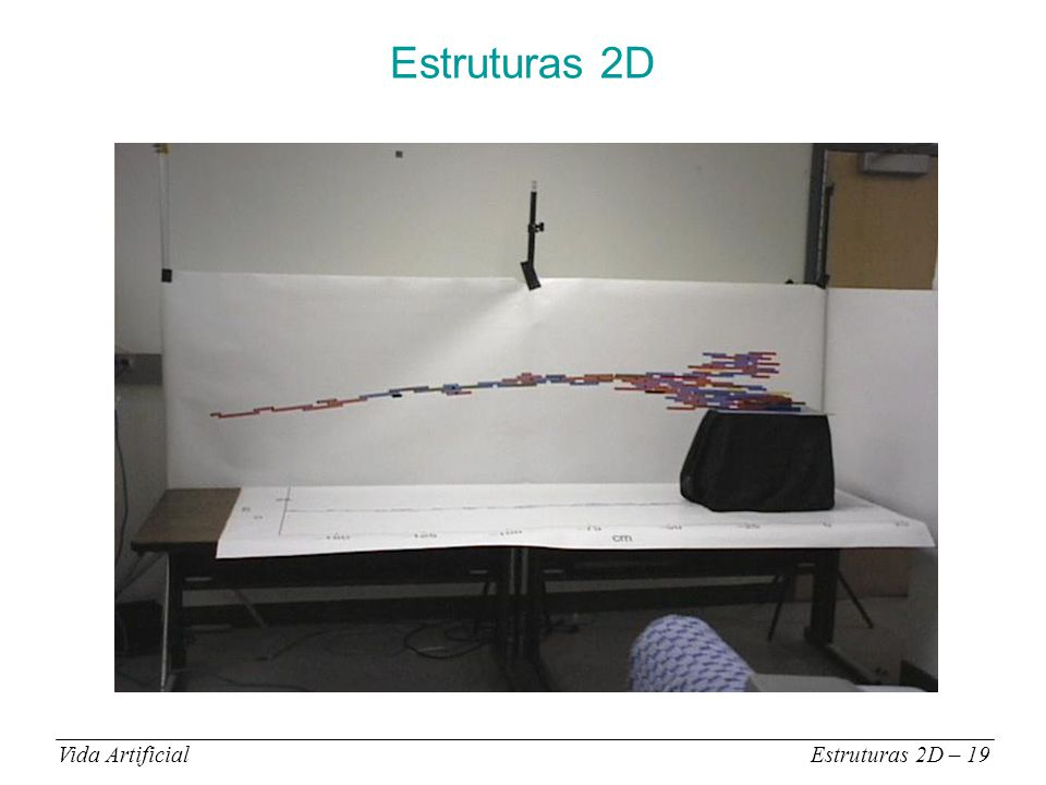 Estruturas 2D Vida ArtificialEstruturas 2D – 19
