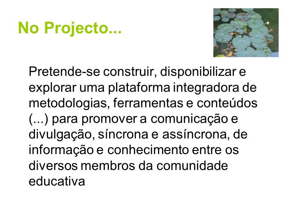 No Projecto...