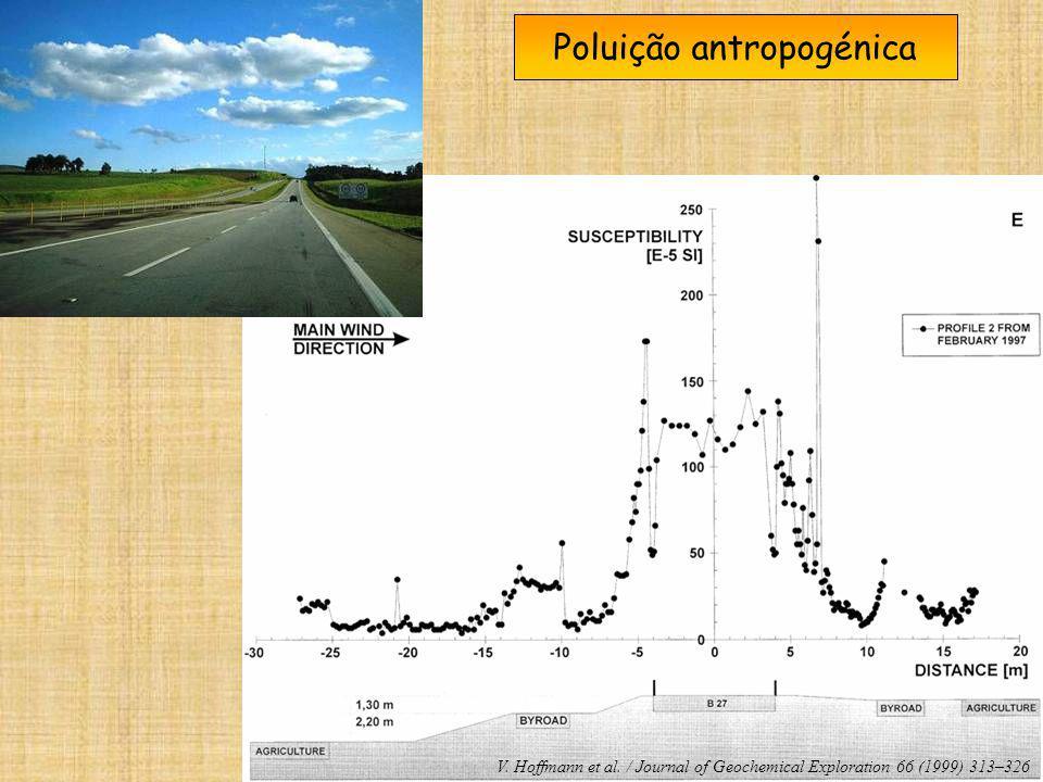 Poluição antropogénica V. Hoffmann et al. / Journal of Geochemical Exploration 66 (1999) 313–326