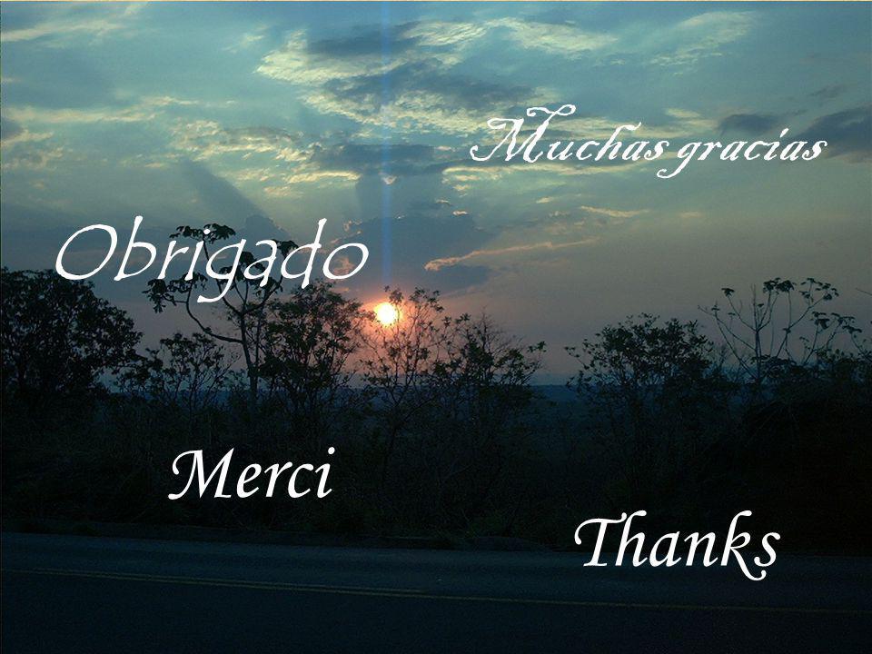 Obrigado Merci Thanks Muchas gracias