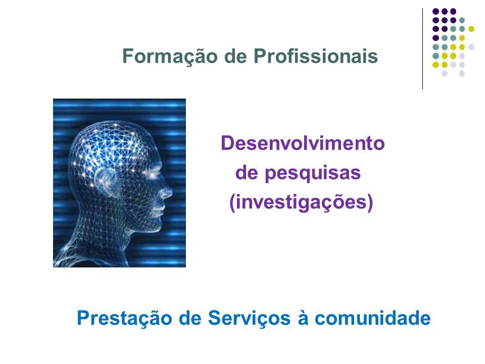 Formação de Profissionais Desenvolvimento de pesquisas (investigações) Prestação de Serviços à comunidade
