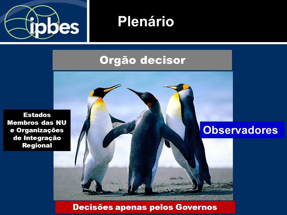 11 Plenário Orgão decisor Decisões apenas pelos Governos Estados Membros das NU e Organizações de Integração Regional Observadores